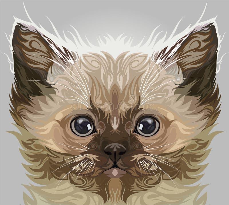 Vecteur de chat persan illustration de vecteur