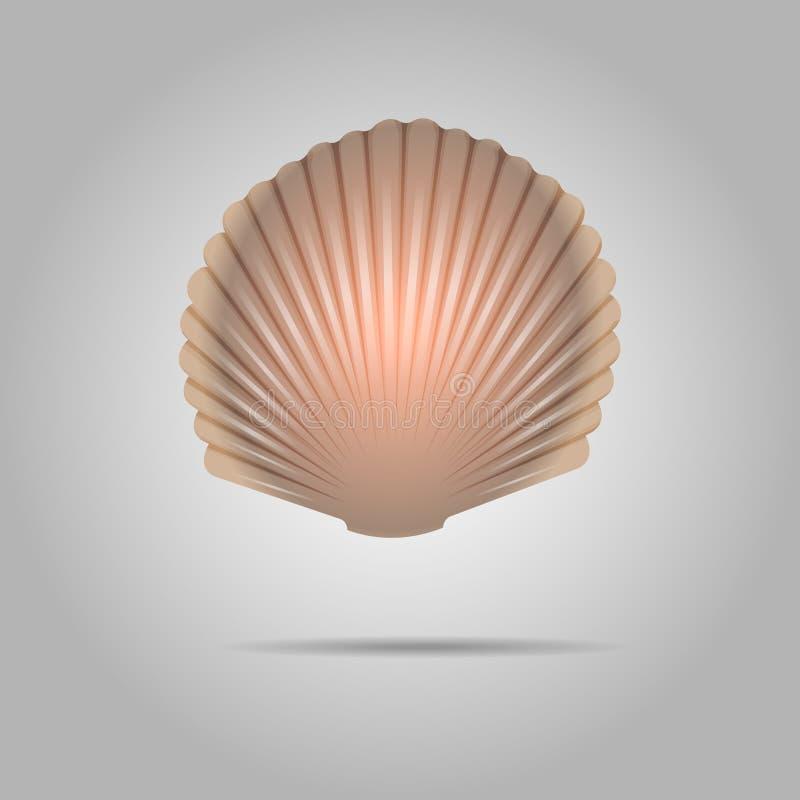 Vecteur de coquillage de feston Crante le fond gris de Shell Isolated On illustration de vecteur