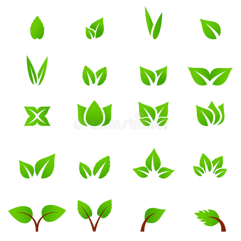 Vecteur de feuille de vert d'icône d'Eco illustration stock