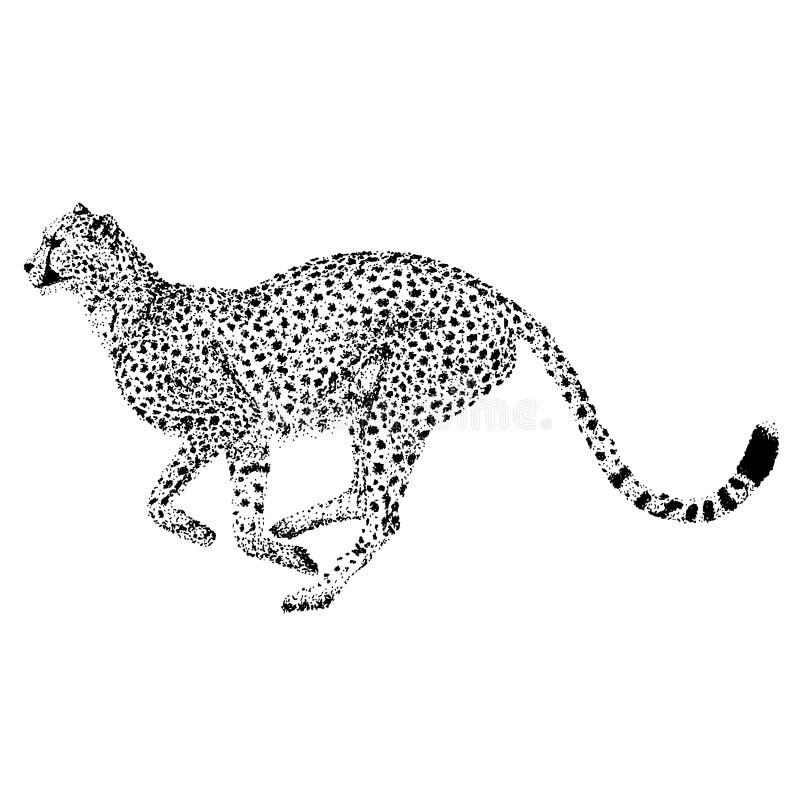 Vecteur de guépard - conception de points illustration libre de droits