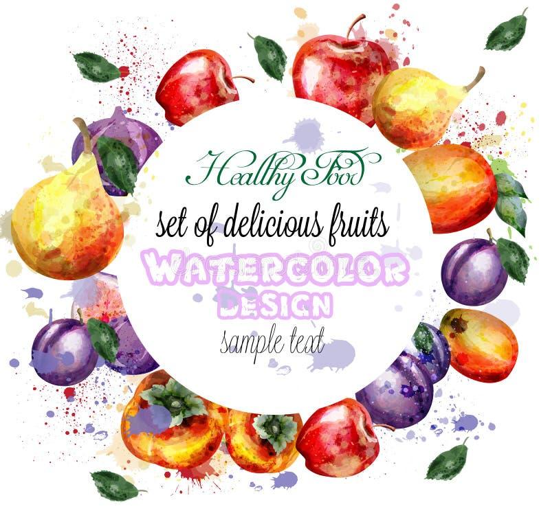 Vecteur de guirlande de fruits d'aquarelle Apple, prune, compositions en fruit d'été de poire illustration de vecteur