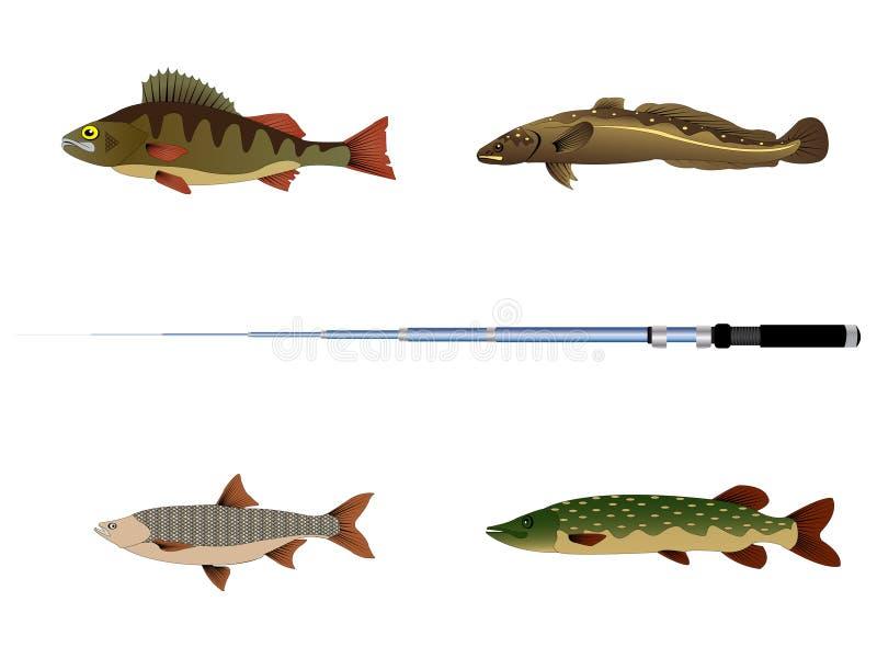 Vecteur de poissons illustration libre de droits