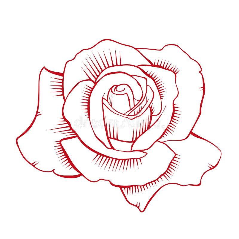 Vecteur de rose de rouge image stock