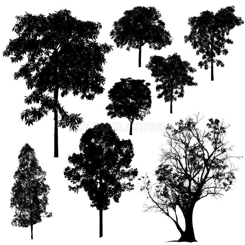Vecteur de silhouette d'arbre