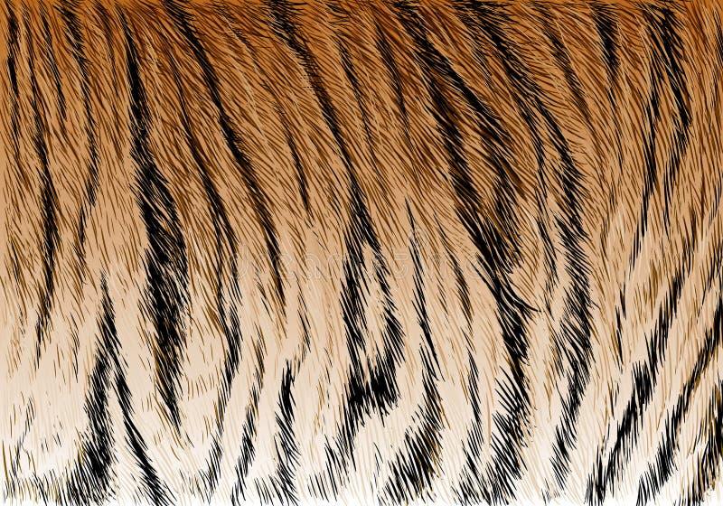 Vecteur de texture de fond de modèle de rayure de fourrure de tigre illustration libre de droits