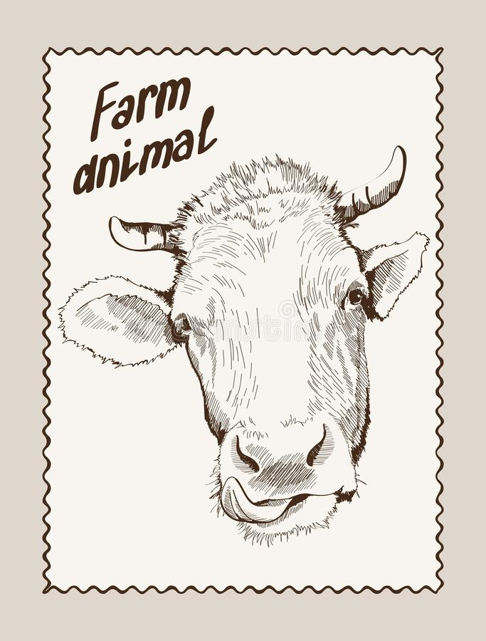 Vecteur de vache tiré par la main illustration de vecteur