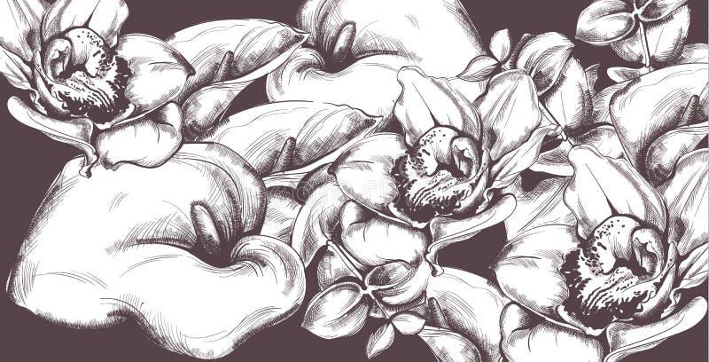Vecteur fleurs et orchidées de calla de modèle de cru de schéma Vieux fond d'effet illustration libre de droits