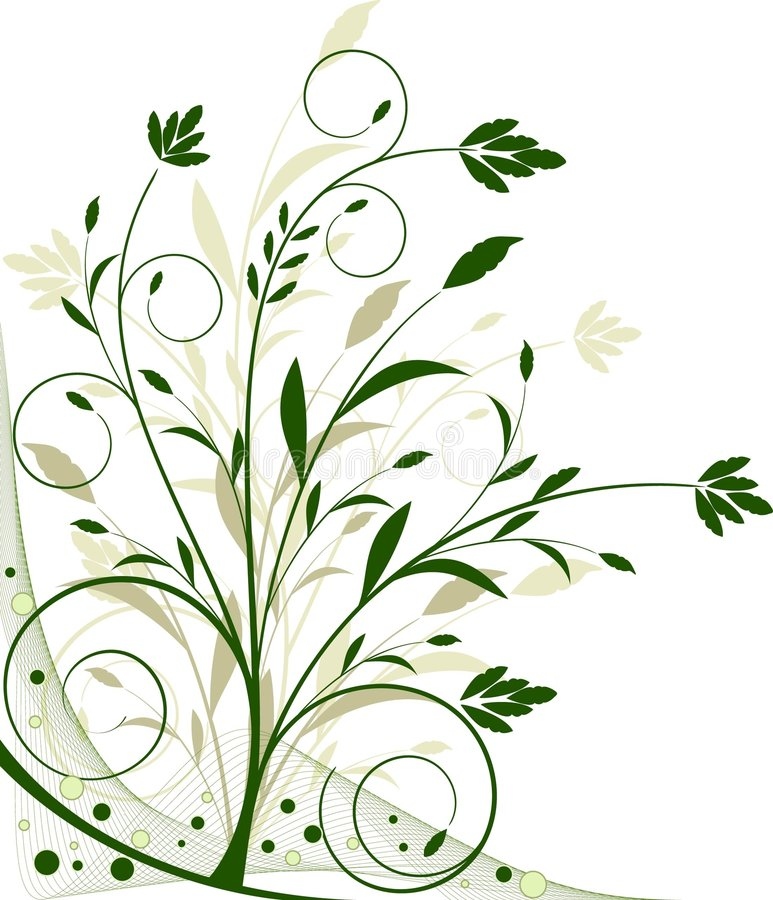 Vecteur floral de beckground illustration stock