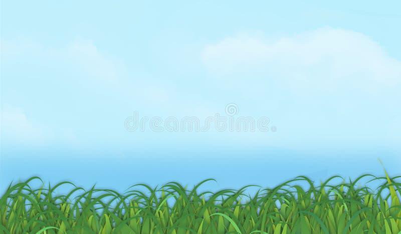 Vecteur Graohic horizontal de fond de ciel d'herbe images stock