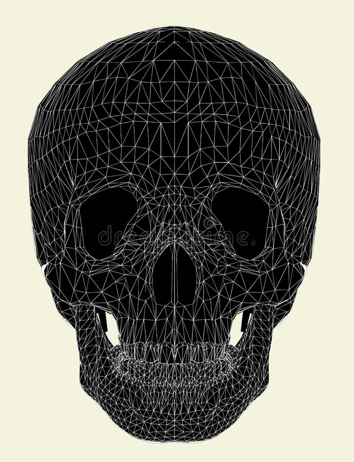 Vecteur humain 01 de crâne illustration stock