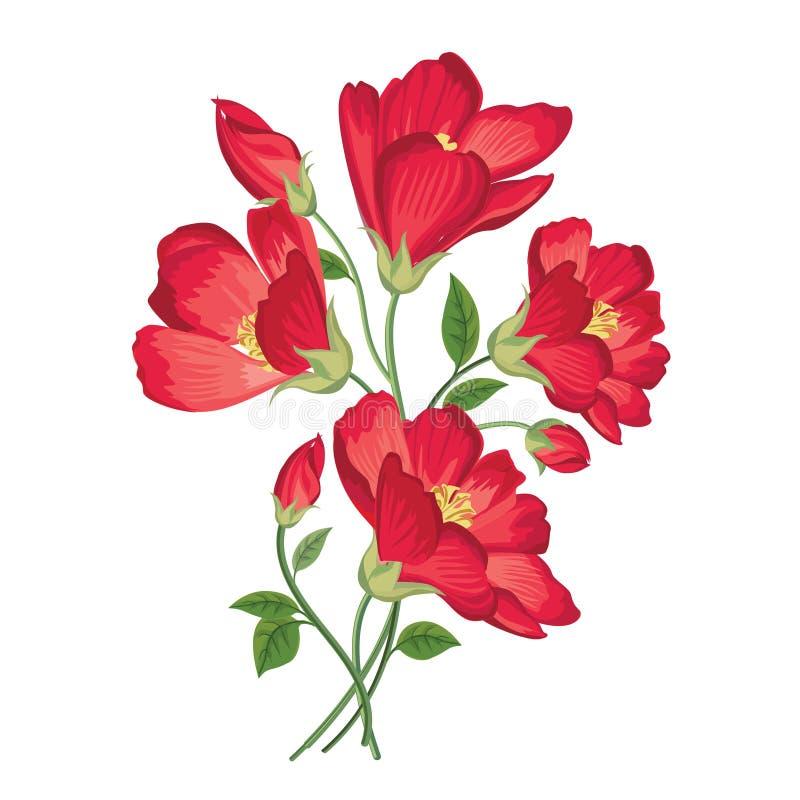 vecteur lumineux d'illustration de fleur de bouquet Trame florale Carte de voeux de Flourish F de floraison illustration de vecteur