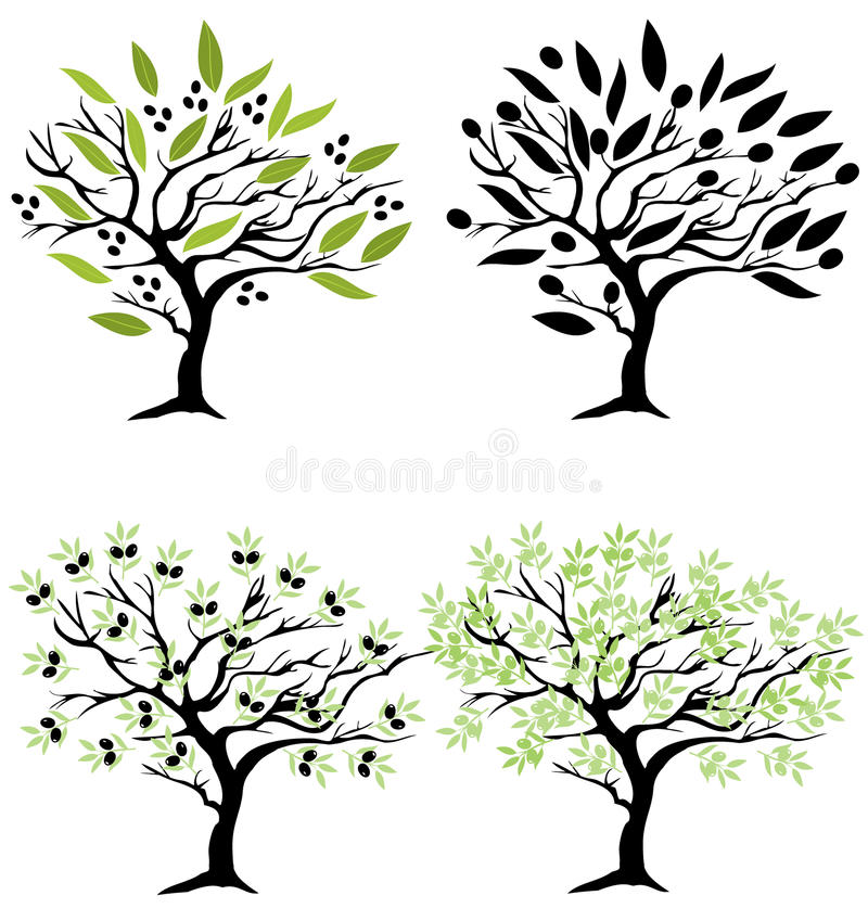 Vecteur Olive Trees illustration libre de droits