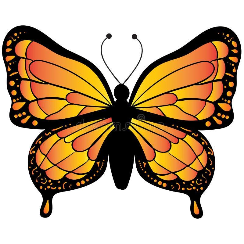 Vecteur orange de papillon d'isolement sur le fond blanc image stock
