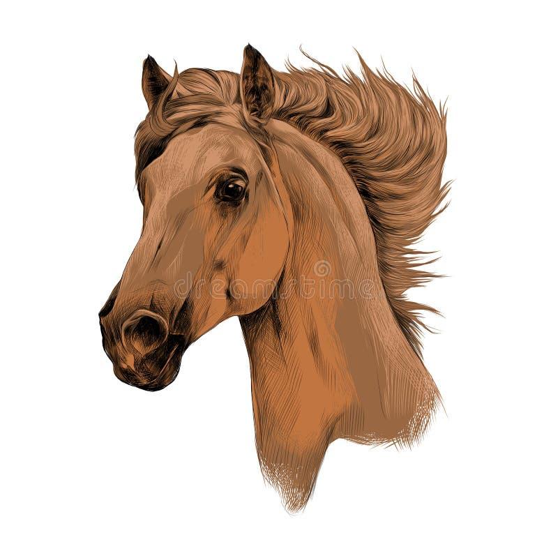 Vecteur principal de croquis de profil de cheval illustration de vecteur