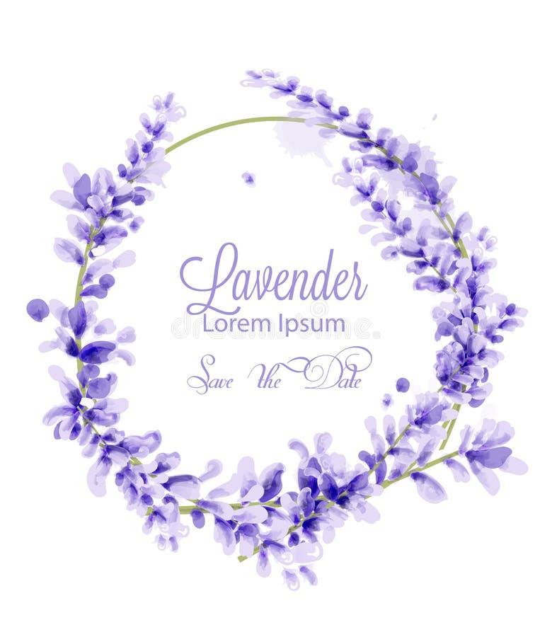 Vecteur rose de guirlande de lavande d'aquarelle décor de floraison floral sensible Carte d'invitation, cérémonie de mariage, car illustration stock