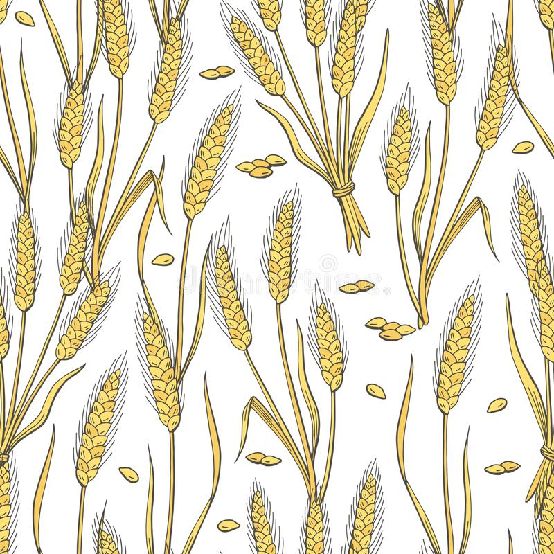 Vecteur sans couture d'illustration de croquis de fond de modèle de couleur graphique de blé illustration stock