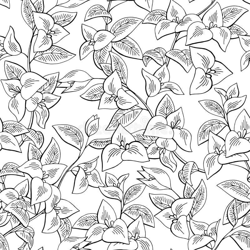 Vecteur sans couture de coloration graphique d'illustration de croquis de fond de modèle de noir de fleur de bouganvillée illustration libre de droits