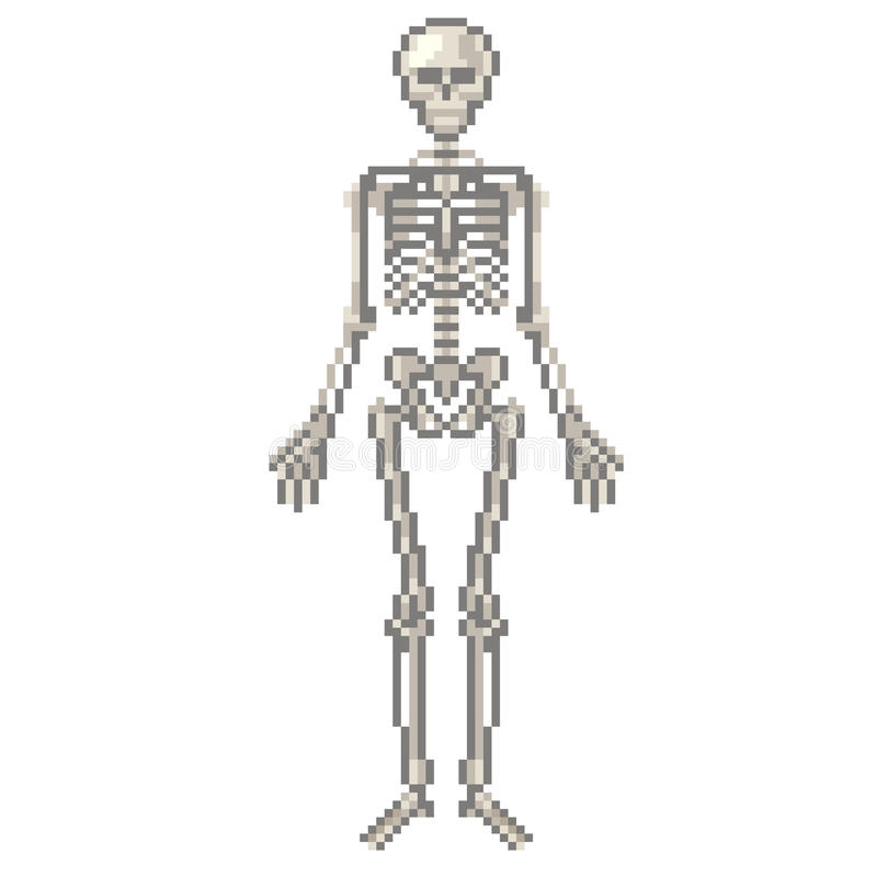 Vecteur squelettique humain de pixel illustration libre de droits