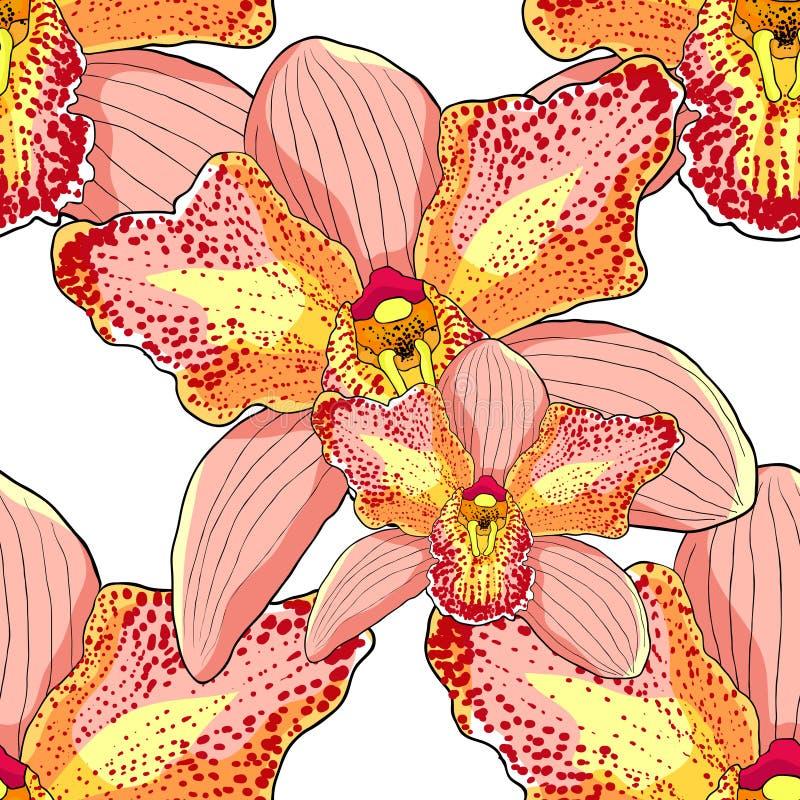 Vecteur tropical IL de fleur de modèle de rose de Cymbidium sans couture d'orchidée illustration libre de droits