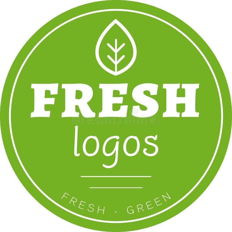 Vecteur vert de logo de cercle de feuille photographie stock