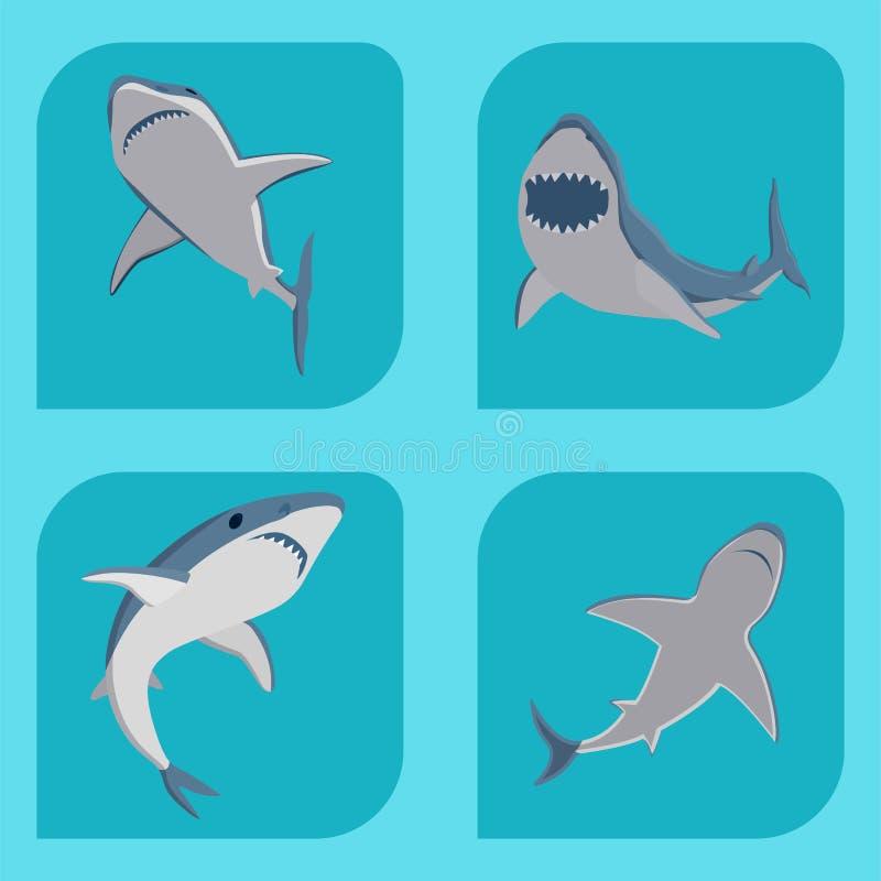Vector акулы заплывания иллюстрации талисман живой природы характера рыб моря зубастой сердитой животный под водой милый морской иллюстрация вектора