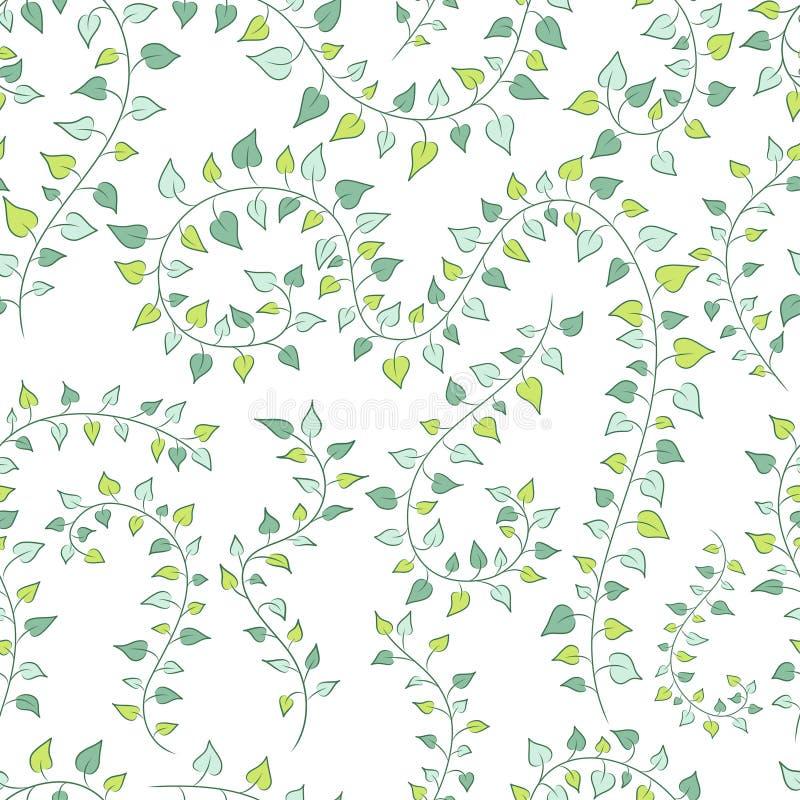 Vector безшовная флористическая предпосылка с зелеными карабкаясь заводами иллюстрация штока