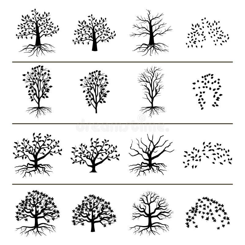 Vector деревья при корни, листва и упаденные листья изолированные на белой предпосылке иллюстрация штока