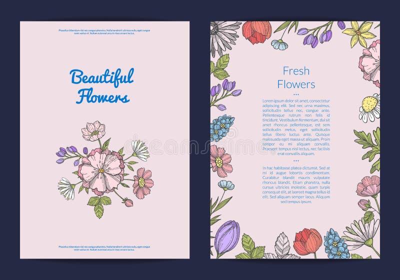 Vector или иллюстрация шаблона рогульки нарисованные рукой карточка цветков иллюстрация штока