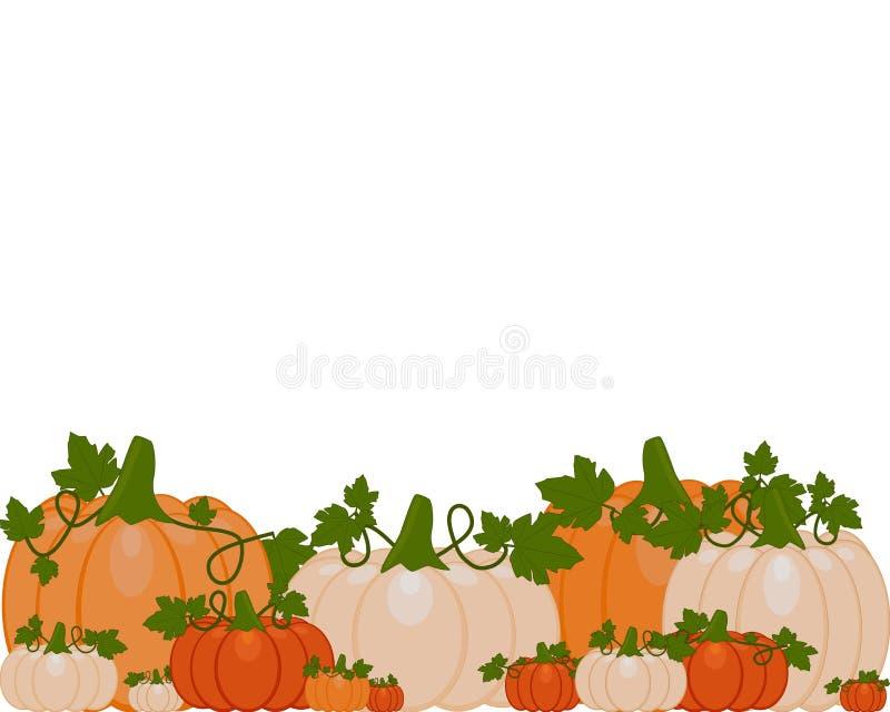 Vector иллюстрация предпосылки оранжевых и белых тыкв иллюстрация вектора
