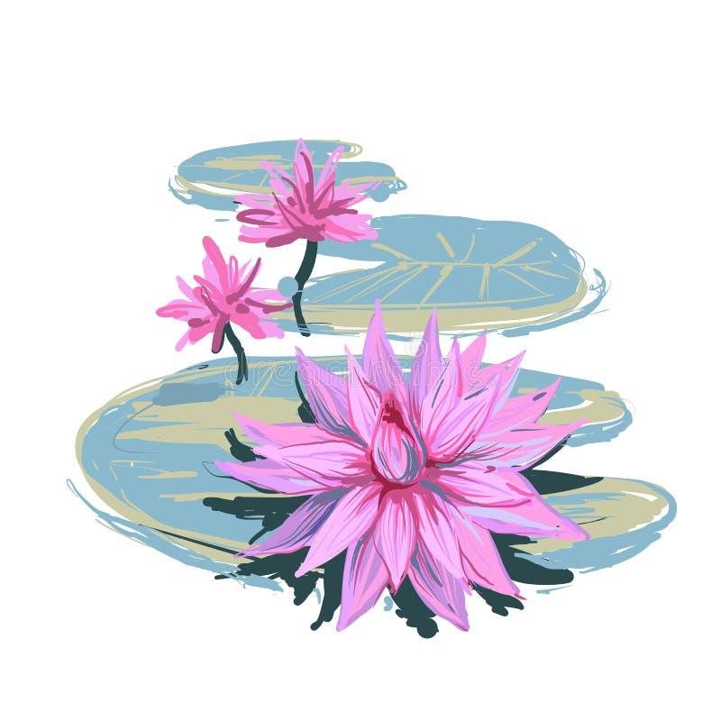 Vector иллюстрация эскиза реалистическая цветков и листьев лотоса изолированных на белой предпосылке Дизайн для естественного иллюстрация вектора