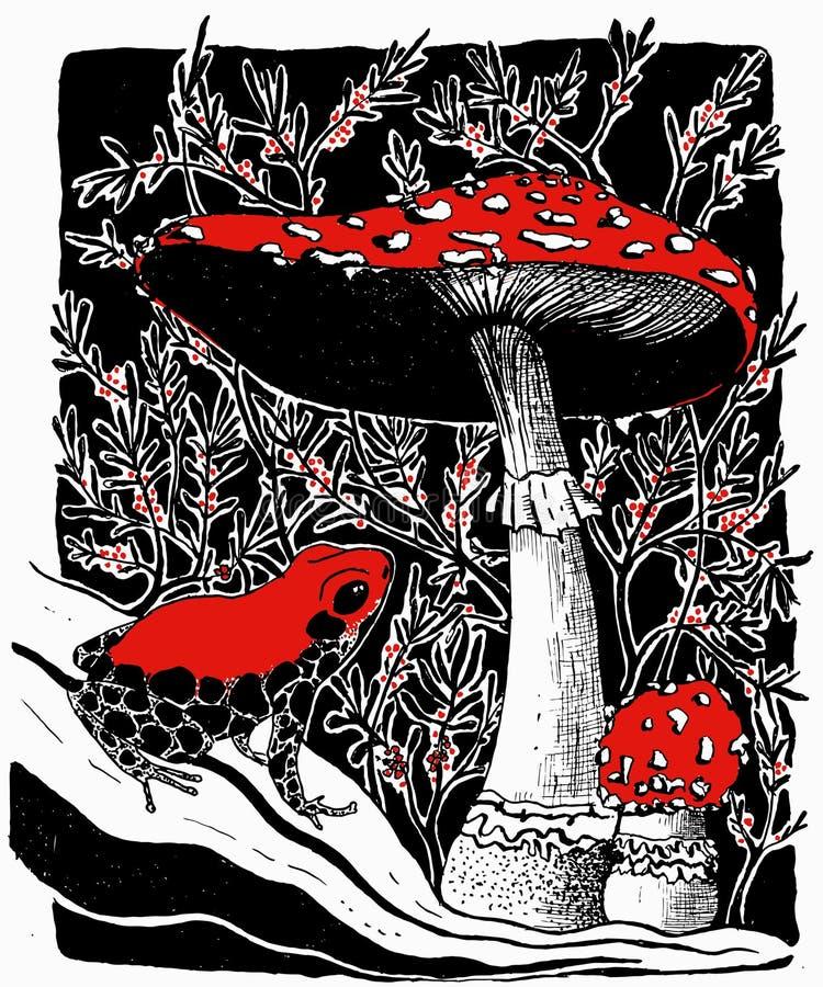 Vector иллюстрация ядовитых грибов пластинчатого гриба лягушки и мухы иллюстрация вектора