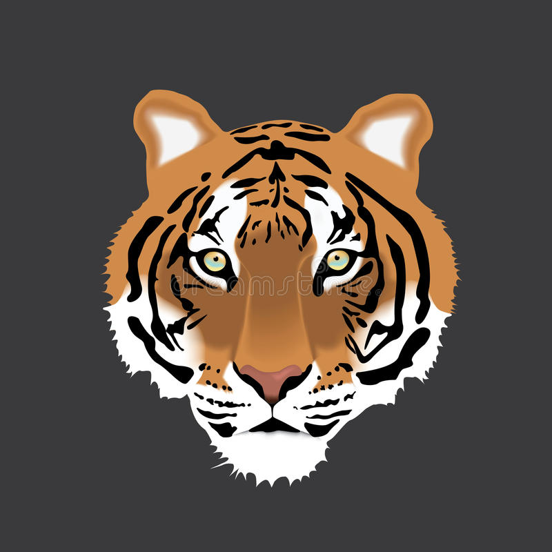 Vector иллюстрация головы тигра на серой предпосылке стоковая фотография