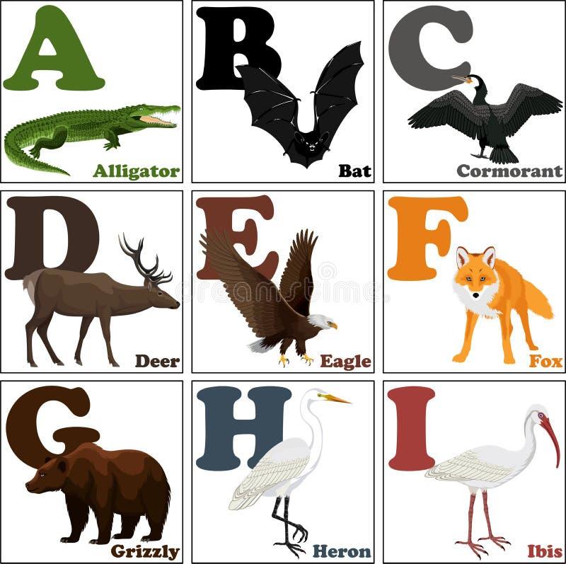 Vector иллюстрация животных алфавита от a к I бесплатная иллюстрация