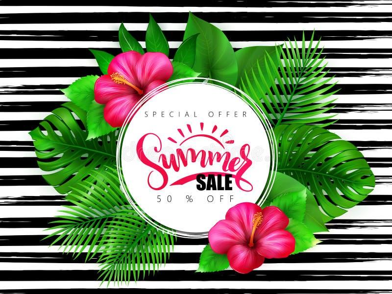 Vector иллюстрация знамени продажи лета при текст литерности руки окруженный с цветком гибискуса и тропическими листьями - иллюстрация штока