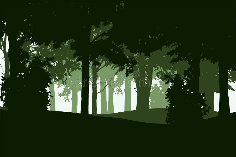 Vector иллюстрация лиственного и coniferous леса бесплатная иллюстрация