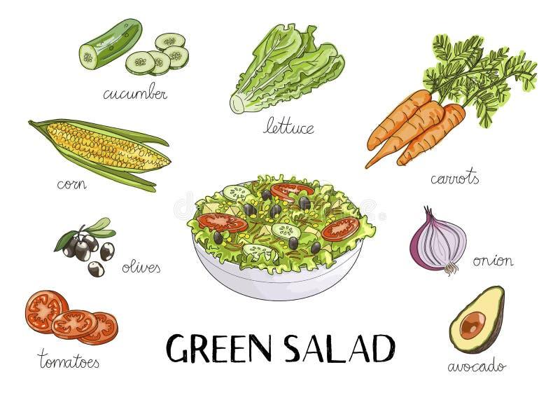 Vector иллюстрация нарисованная рукой с ингридиентами зеленого салата бесплатная иллюстрация