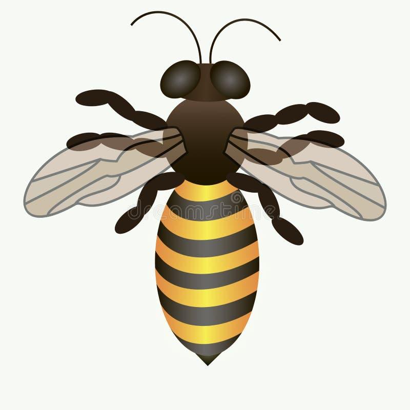 Vector иллюстрация логотипа для темы пчел иллюстрация вектора