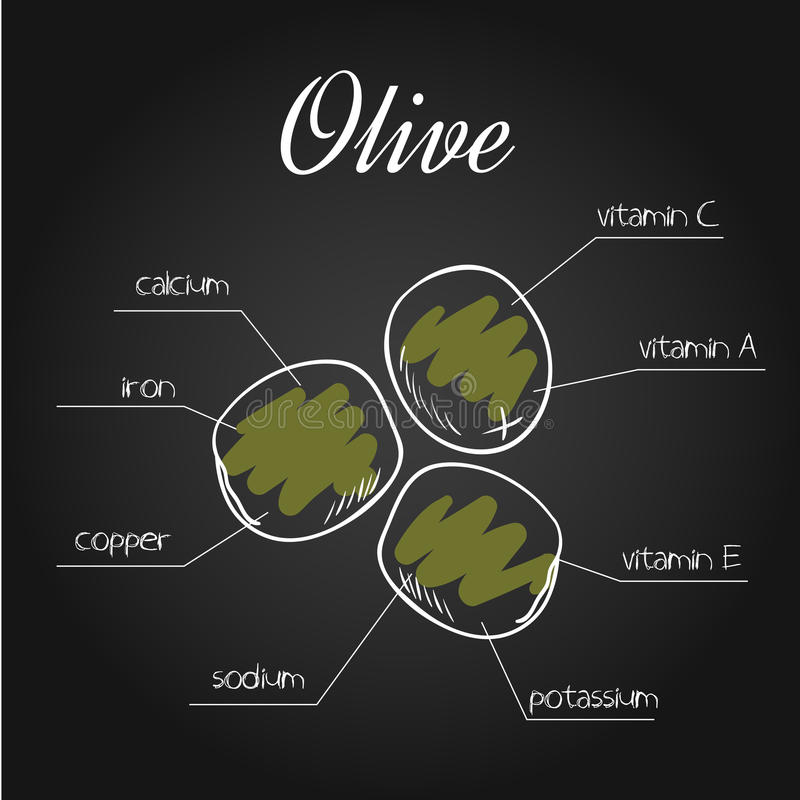 Vector иллюстрация питательных веществ перечислите для оливки на фоне доски иллюстрация штока