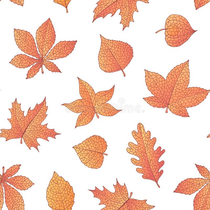 Vector картина осени безшовная с дубом, тополем, буком, кленом, листьями осины и конского каштана и физалисом оранжевого цвета иллюстрация вектора