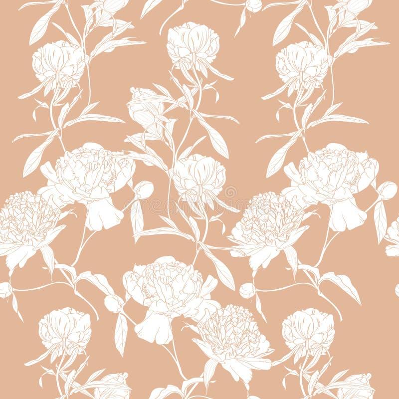 Vector нарисованная рукой иллюстрация эскиза скороговорки белых цветков пиона безшовной иллюстрация штока