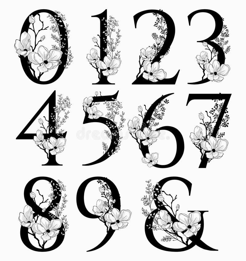 Vector нарисованные рукой флористические вензеля и логотип номеров иллюстрация штока
