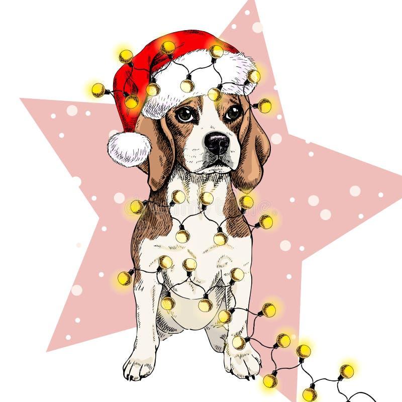 Vector портрет собаки бигля нося гирлянду светов рождества шляпы santa Изолированный на звезде и снеге Цвет Skecthed иллюстрация вектора
