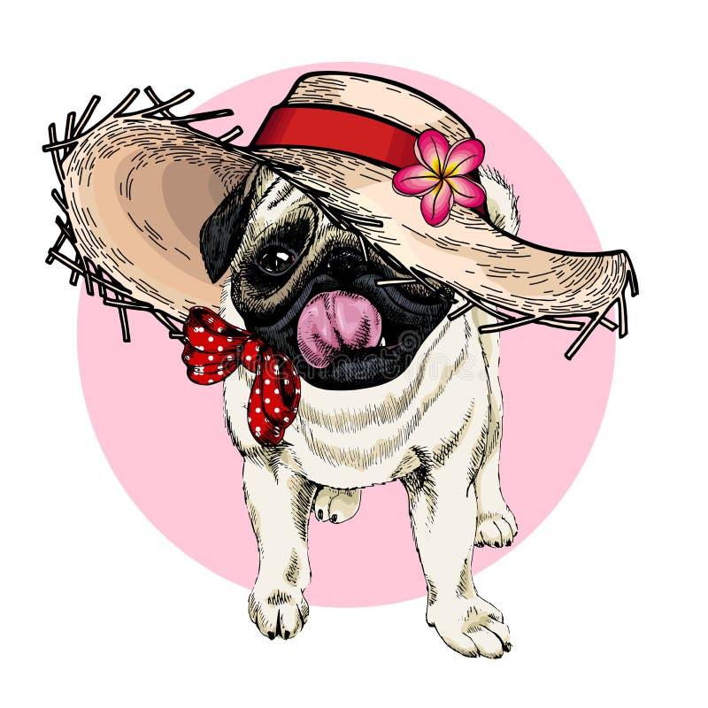 Vector портрет соломенной шляпы собаки мопса нося, цветка и bandana точки польки Иллюстрация шаржа моды лета Рука иллюстрация вектора