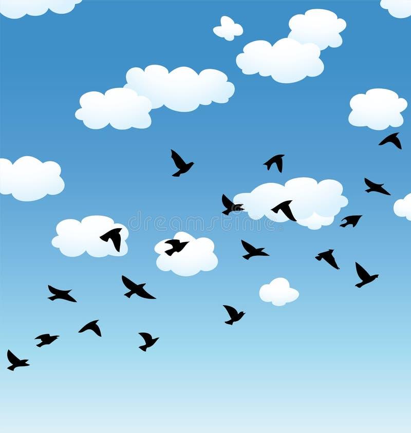 vector птицы и облака летания в небе бесплатная иллюстрация