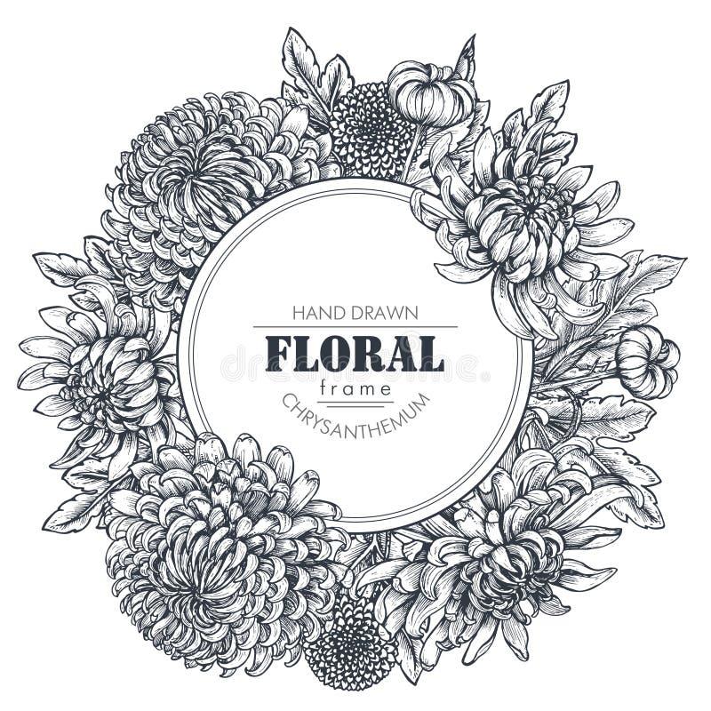 Vector рамка круга с нарисованными рукой цветками хризантемы иллюстрация штока