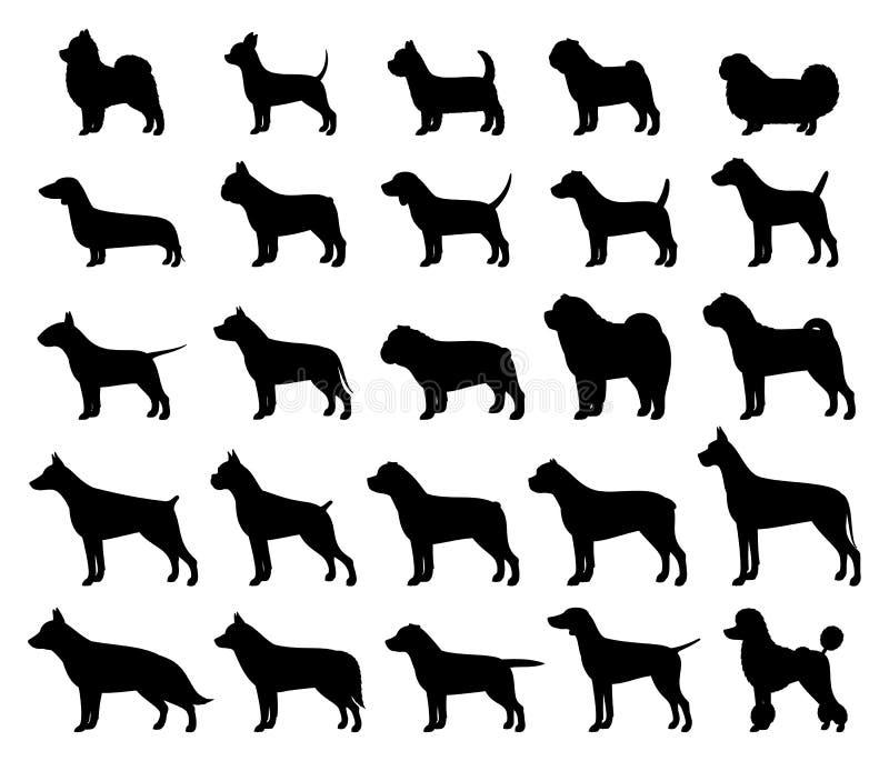 Vector собрание силуэтов пород собаки изолированное на белизне иллюстрация штока