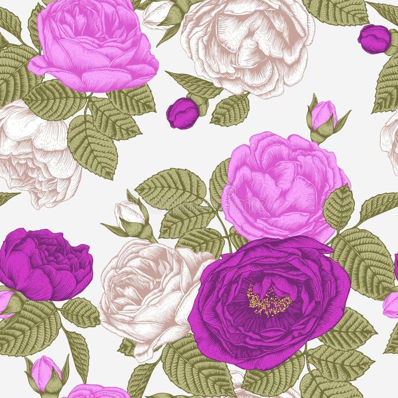 Vector флористическая безшовная картина с белыми, фиолетовыми и фиолетовыми розами бесплатная иллюстрация