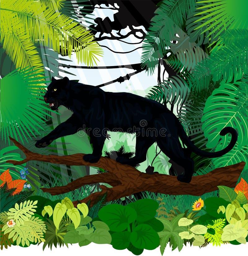 Vector ягуар леопарда черной пантеры в тропическом лесе джунглей иллюстрация вектора