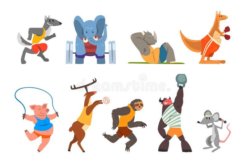 Животные делая тренировку, кенгуру, гиппопотам, волк, слон, свинья, бык, лень и олени в спортзале, фитнесе и здоровом бесплатная иллюстрация