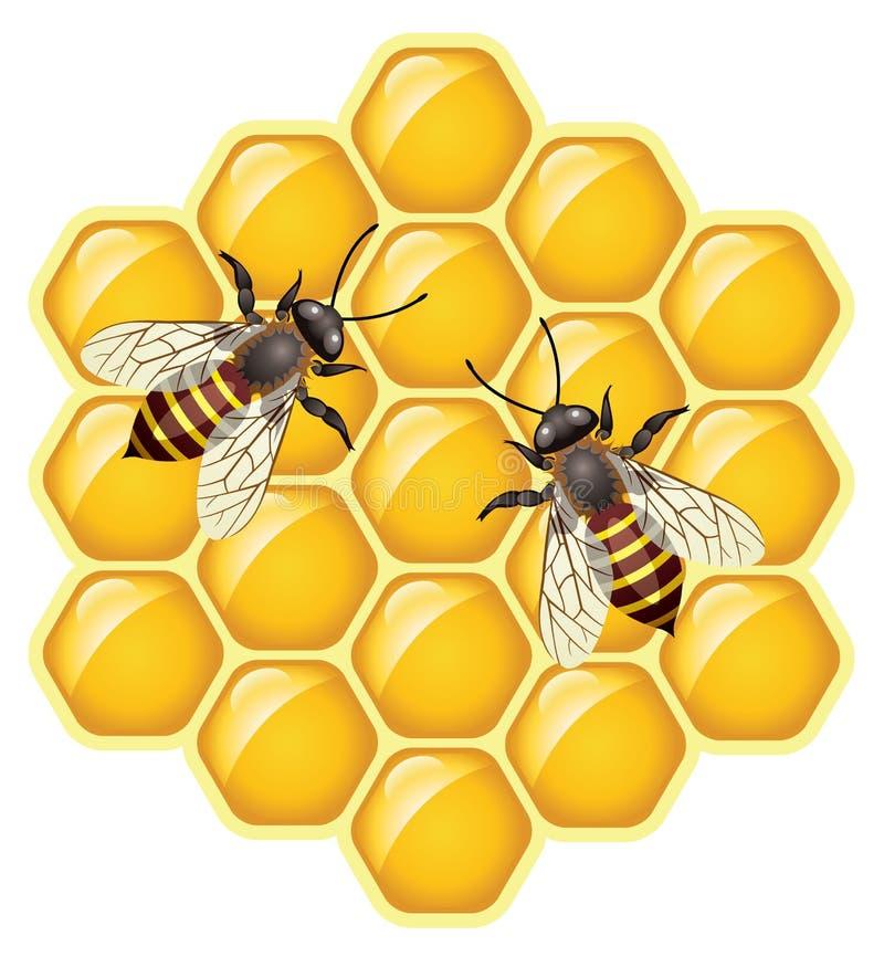 vector abelhas em honeycells ilustração stock